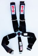 5 Point Harness with Aircraft Buckle - Various Colours
